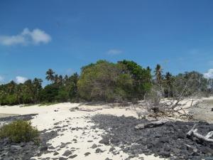 Pulau Samber Gelap yang memiliki pantai berpasir putih
