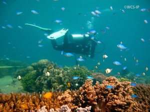WCS_CRS_Lombok-3