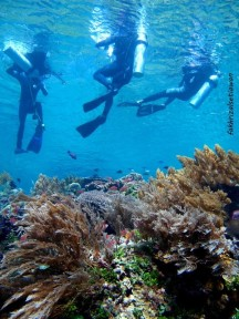 Tim bersiap turun di Pulau Ternate (credit foto oleh Bang Ubun)